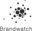 logotipo del Brandwatch1