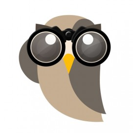 Image for Media Kit Binoculars Owly