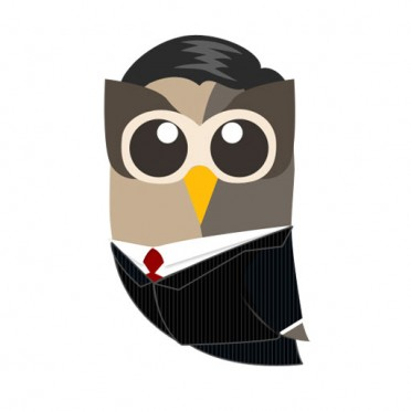 Image for Media Kit Ambassador Owly