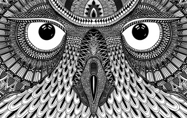 Image for Owl Eyes