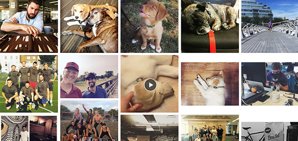 Image for Make the Most of User-Generated Content With Social Campaigning